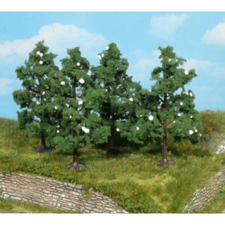 Drzewa Kwitnące Owocowe 8cm...